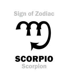 astrology sign of zodiac scorpio the scorpion vector image