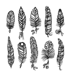 Boho feather hand drawn effect style vector image