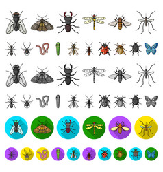 different kinds of insects cartoon icons in set vector image