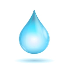 water transparent drop vector image