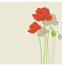 flower print vector image vector image
