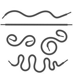 set of grey shoelace vector image