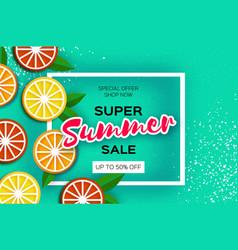 Lemon graprfruit orange citrus super summer vector