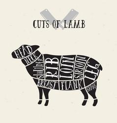 Meat cuts - lamb diagrams for butcher shop vector