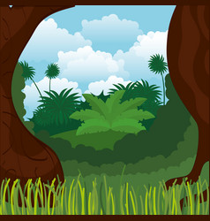 rainforest jungle natural scene vector image