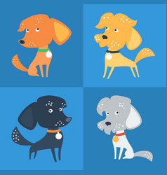 set of funny mixed breed or mongrel dog vector image vector image
