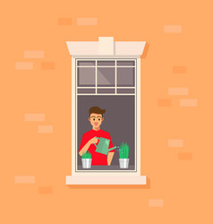 apartment window with man watering plant vector image