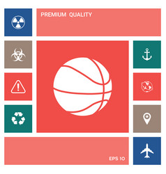 basketball ball icon elements for your design vector image