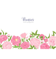 Elegant floral background or backdrop decorated vector
