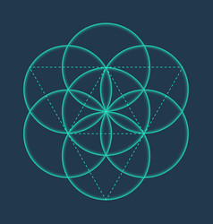 Flower of life metatrons cube sacred geometric vector