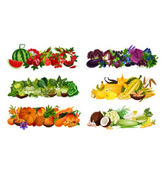 Healthy color diet fruits and veggies berries vector