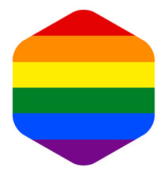 rainbow flag in hexagon shape vector image