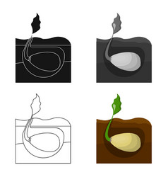 root single icon in cartoon style root vector image