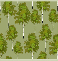 seamless pattern birch tree in springtime vector image