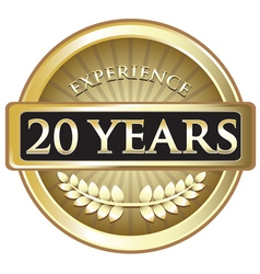 Twenty Years Experience Gold vector