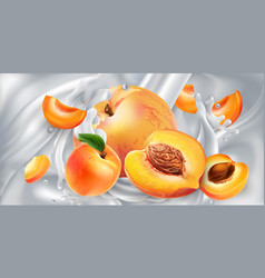 Apricots and peaches in a stream milk or yogurt vector
