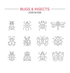 Bug collection vector