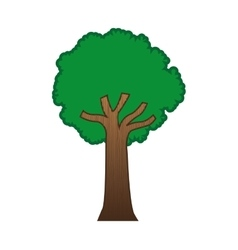 Large green tree isolated icon design vector