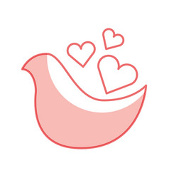 dove with heart love card vector image