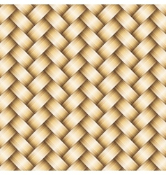 wickerwork golden metallic background vector image vector image