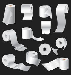 realistic toilet paper and kitchen towel roll vector image
