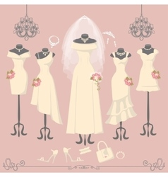 Bridal dresses on mannequinFashion background vector