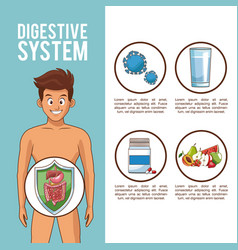 digestive system concept vector image