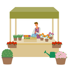 flower market seller at showcase isolated florist vector image