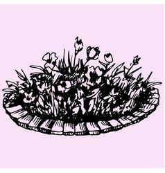 Flowers in flowerbed vector