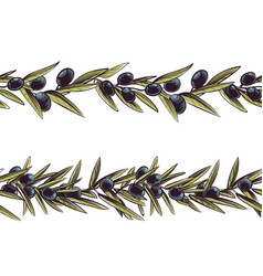 Olive border greece branches seamless frame vector