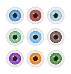 Realistic eyeball set vector