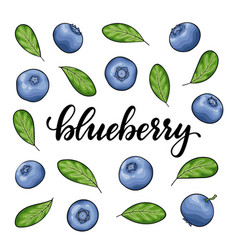 Set beautiful cartoon blueberry with black vector