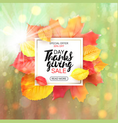 thanksgiving sale letter with yellow leaves fall vector image