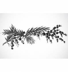 Twig ornament vector