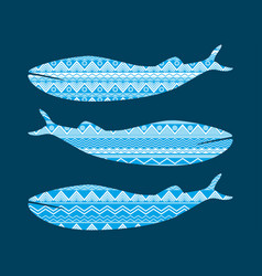 whale with pattern ethnic style tribal textiles vector image
