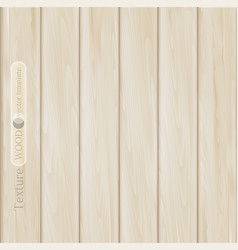 wood background- texture of light brown beige vector image