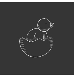 Chick peeking out of egg shell Drawn in chalk vector