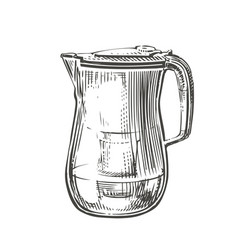 hand-drawn filter pitcher with clean water vector image