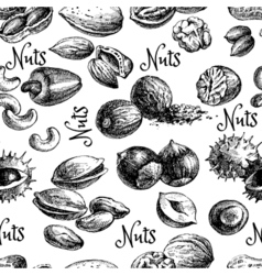 Vintage hand drawn sketch nuts seamless pattern vector image