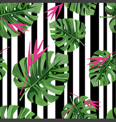 Exotic jungle plant tropical palm leaves with pink vector