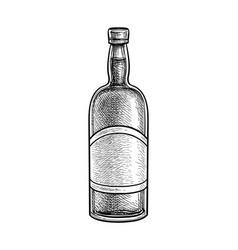 Ink sketch whiskey bottle vector