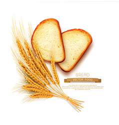 Slices sliced bread loaf lying isolation vector