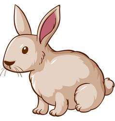 white rabbit cartoon on background vector image