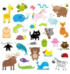 Zoo animal set Cute cartoon character collection vector image