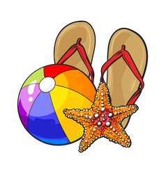 flip flops starfish and inflatable beach ball vector image vector image
