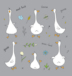 goose doodles set cute geese sketch hand drawn vector image