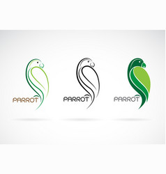parrot design on white background bird icon vector image