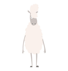 Sheep a domestic animal vector