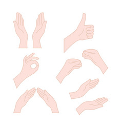 thin line drawing flesh color hands vector image