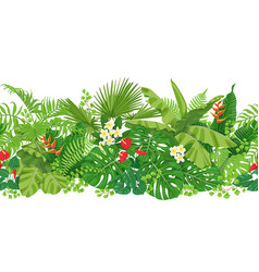 tropical plants seamless border vector image